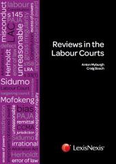 Reviews in the Labour Courts cover